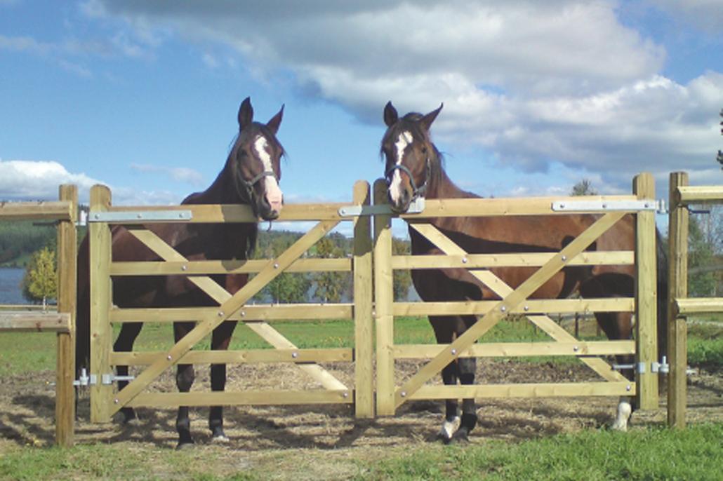 Festzaun für Pferde